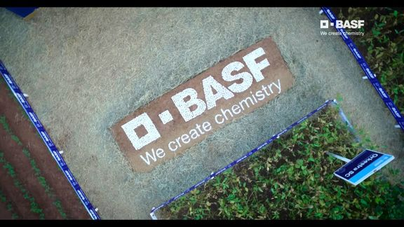 BASF remains cautious in face of limited order visibility