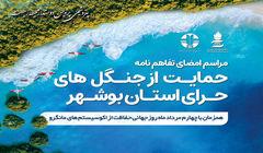 پتروشیمی پردیس حامی جنگل های حرای استان بوشهر شد
