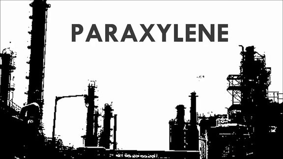 Asian paraxylene tumbles to 4-month low below $1,000/mt CFR, margins under pressure.